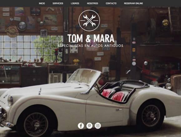 Desarrollador de paginas web y diseño grafico