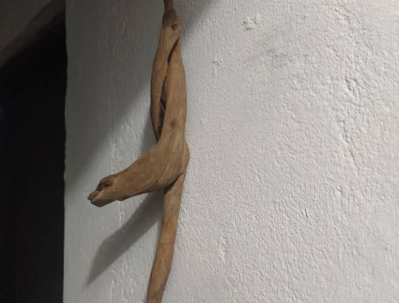 Decora tu hogar con arte en raíz