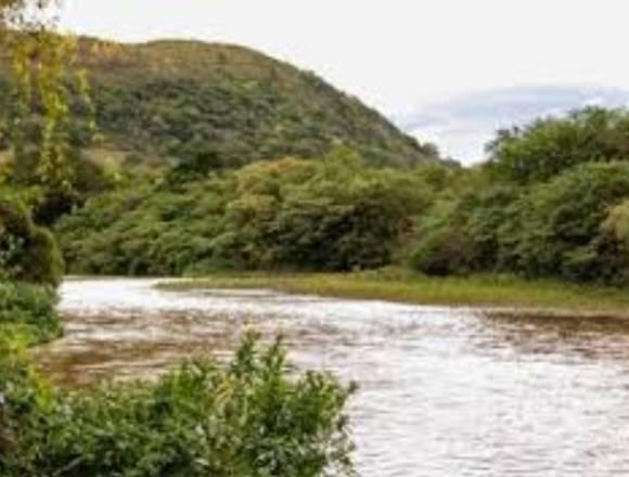 Gosta de pescar lotes de 500 m2 a 1,5 km do rio