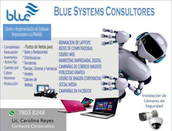 Blue Systems Consultores