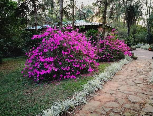 Visite Parque Kunuꞌu Renda, a 7 km. de Caacupé