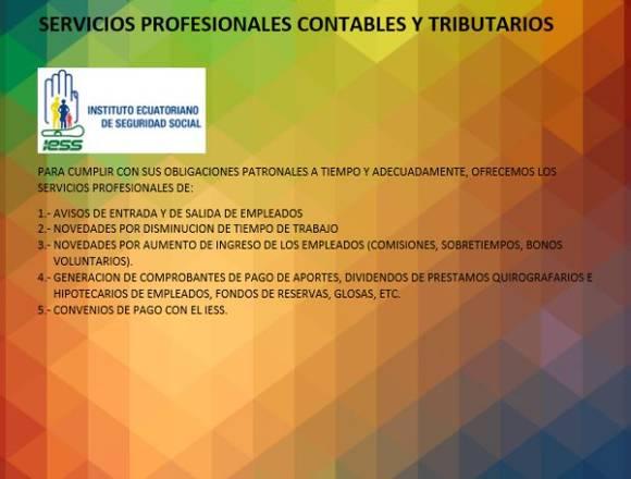 SERVICIOS PROFESIONALES CONTABLES Y TRIBUITARIOS