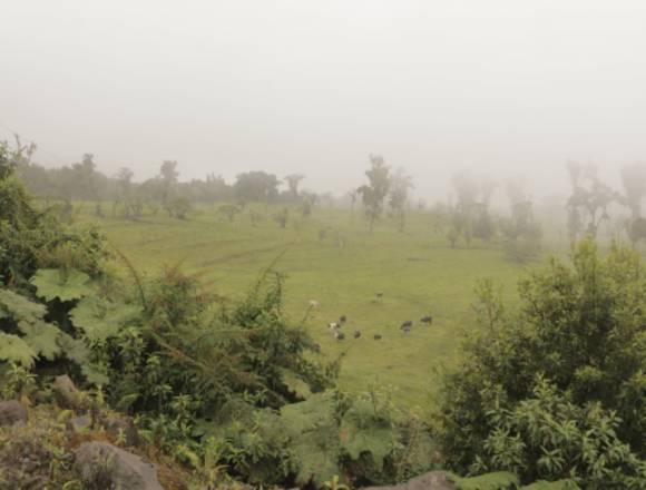 Hacienda 622 hectáreas en venta - Ranch  for sale