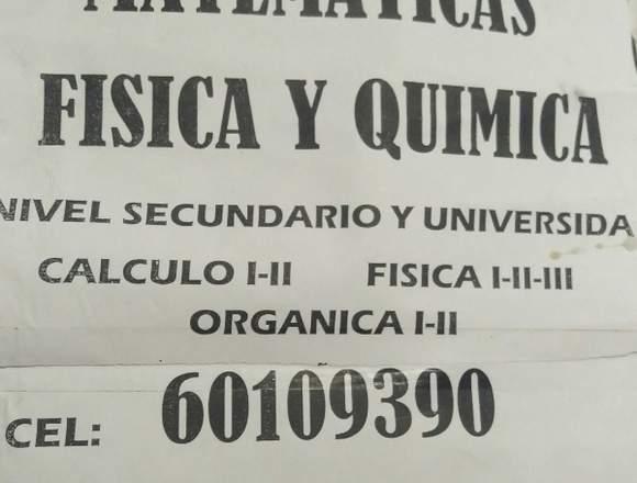 Ingeniero Eléctrico UMSA