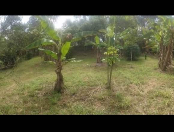 Vendo terreno en Siguatepeque, col. San Fernando