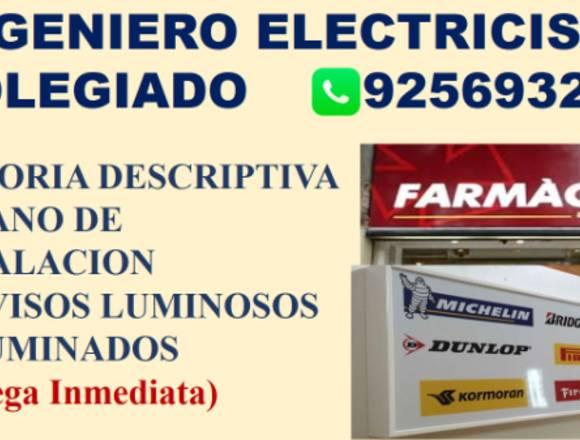 INGENIERO ELECTRICISTA COLEGIADO,PLANO,POZO TIERRA