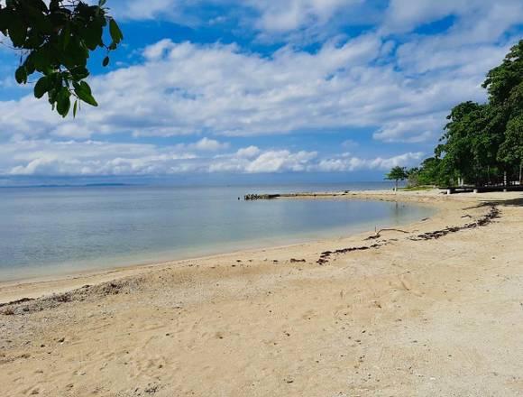 Lote en Venta isla Baru zona Peninsular