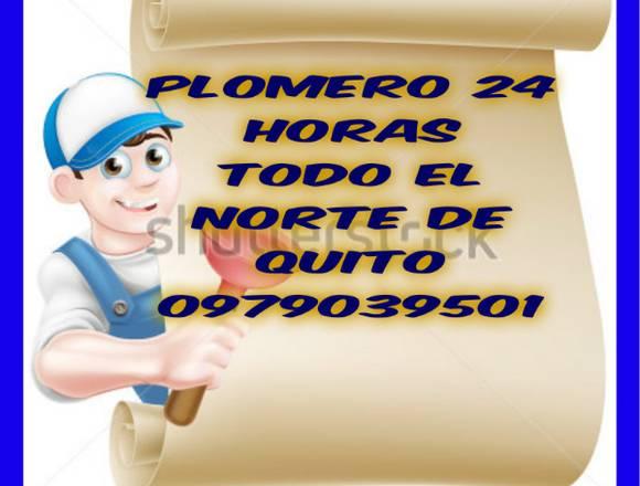 PLOMERO DE LOS BUENOS EN COBRE NORT DE QUITO