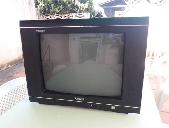 Televisor Microsonic 21 Pulgadas