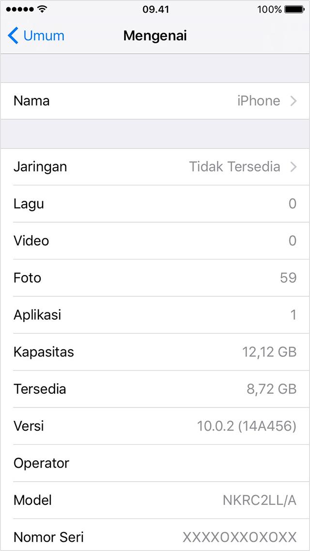 iPhone General Setting