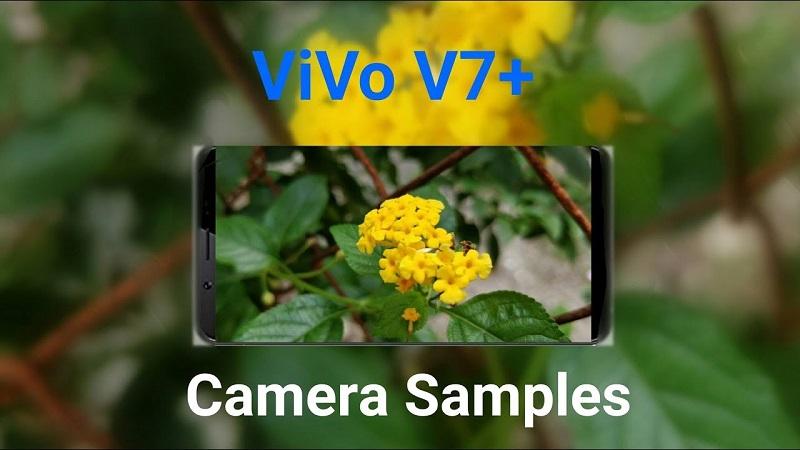 (1) camera vivo v7+