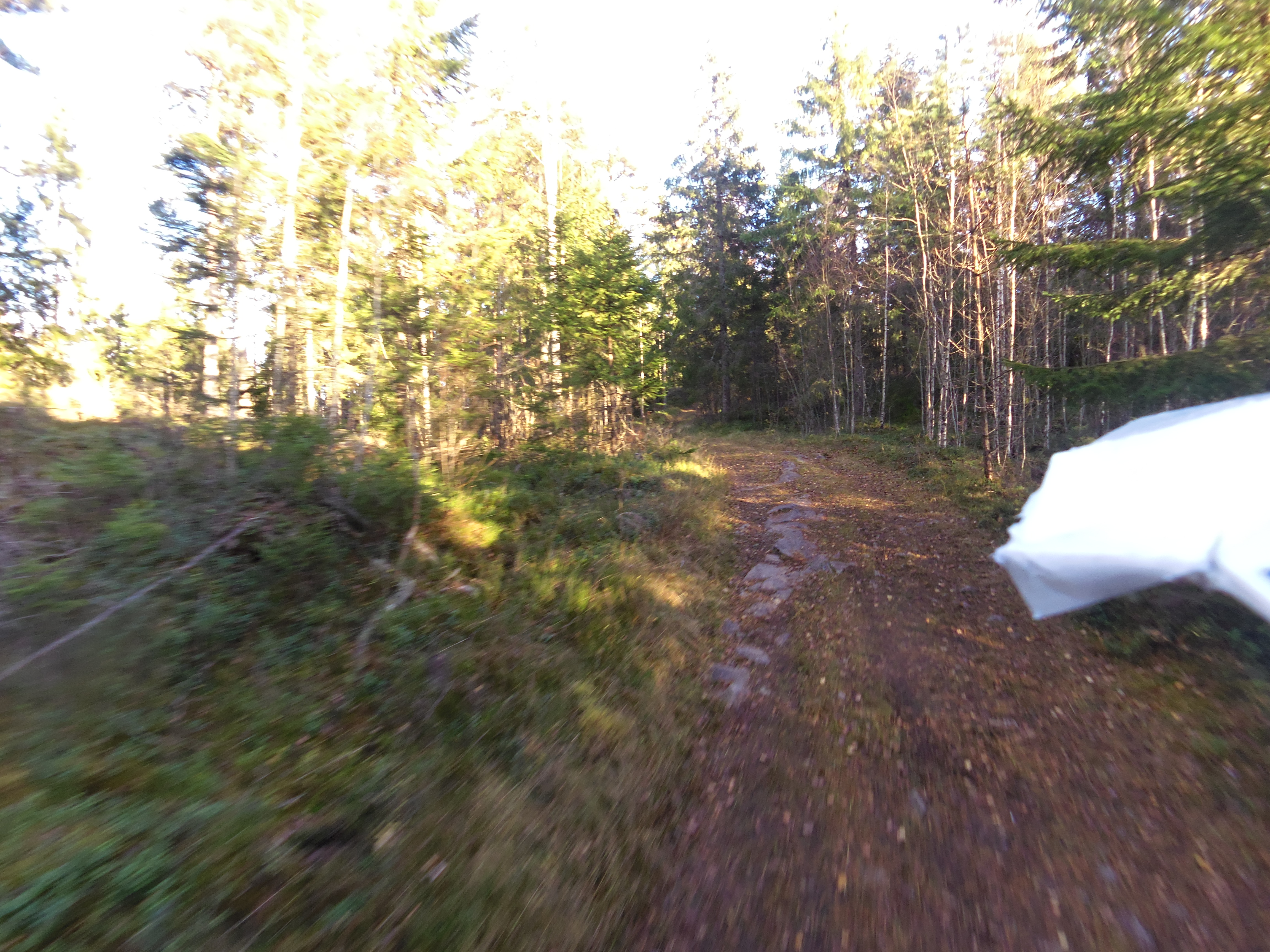 Bild på grusväg