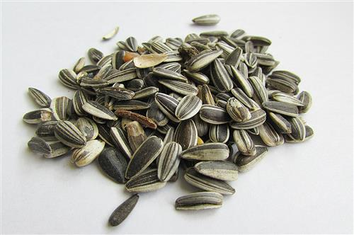 Sunflower seeds Vitamin E food recipes