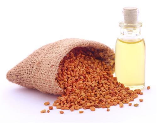 Fenugreek for hair oil