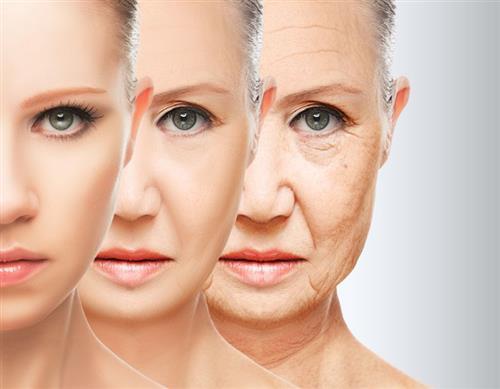 Vitamin C for anti-aging