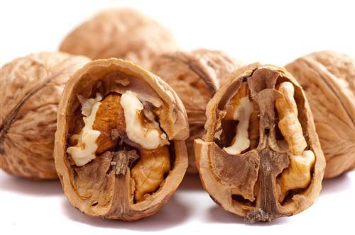 Walnuts omega 3 fatty acids