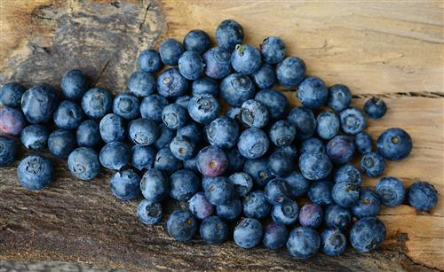 Blueberries for anti-aging diet