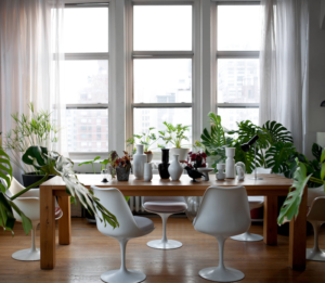 A minimalist dining room is great with jungle decor