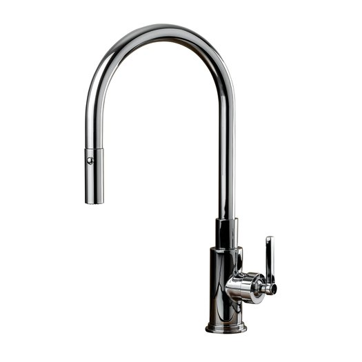 Elegant & trendy kitchen faucet with hand shower