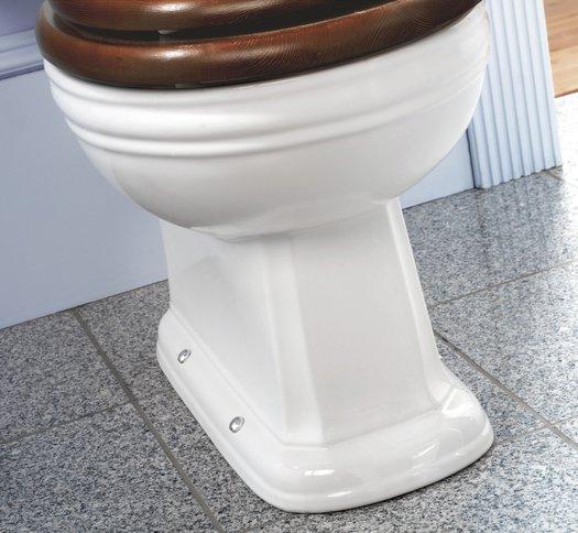 Detail of the cottage Balasani toilet