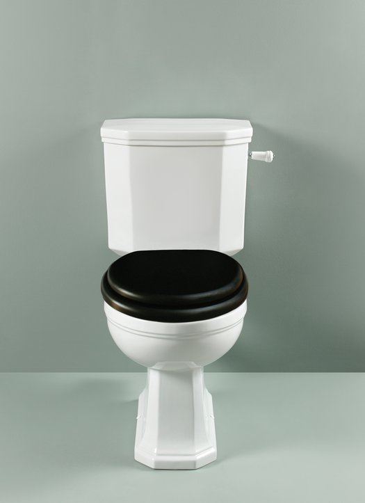 Stylish Empire toilet