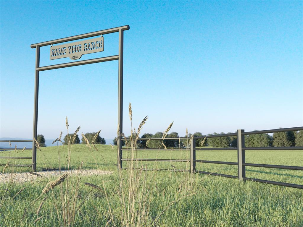 Lot 9 US Highway 69  Point, Texas 75472 - acquisto real estate best realtor dfw jody daley liberty high school realtor