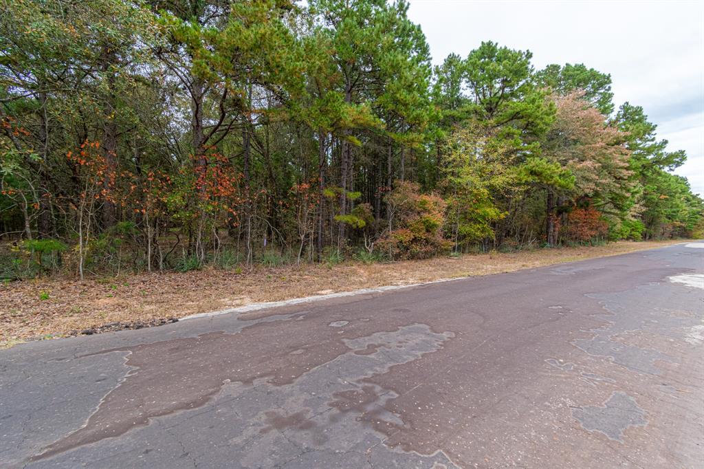 16543 County Road 3147 Tyler, Texas 75706 - Acquisto Real Estate best mckinney realtor hannah ewing stonebridge ranch expert