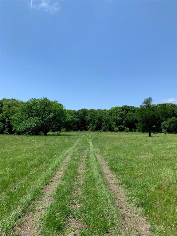 10943 County Road 670  Blue Ridge, Texas 75424 - Acquisto Real Estate best mckinney realtor hannah ewing stonebridge ranch expert