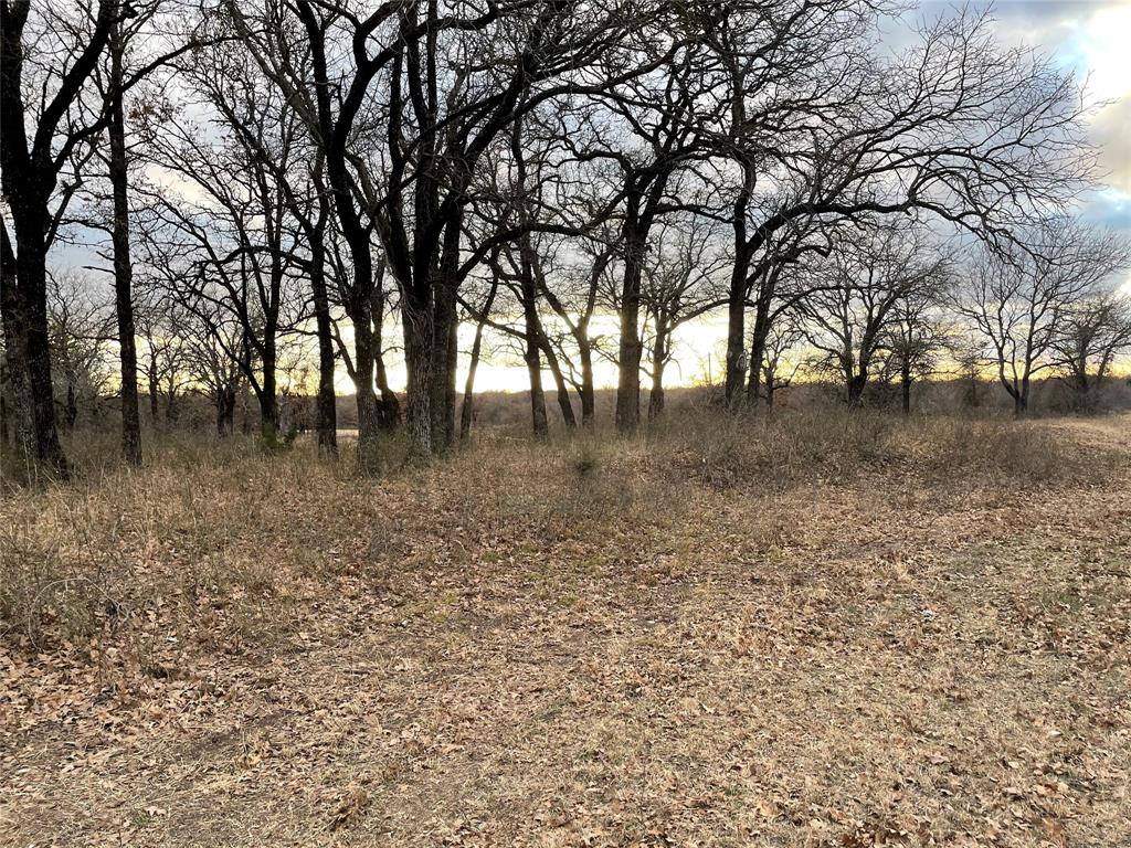 10 Ac Sunflower Paradise, Texas 76073 - acquisto real estate best realtor foreclosure real estate mike shepeherd walnut grove realtor