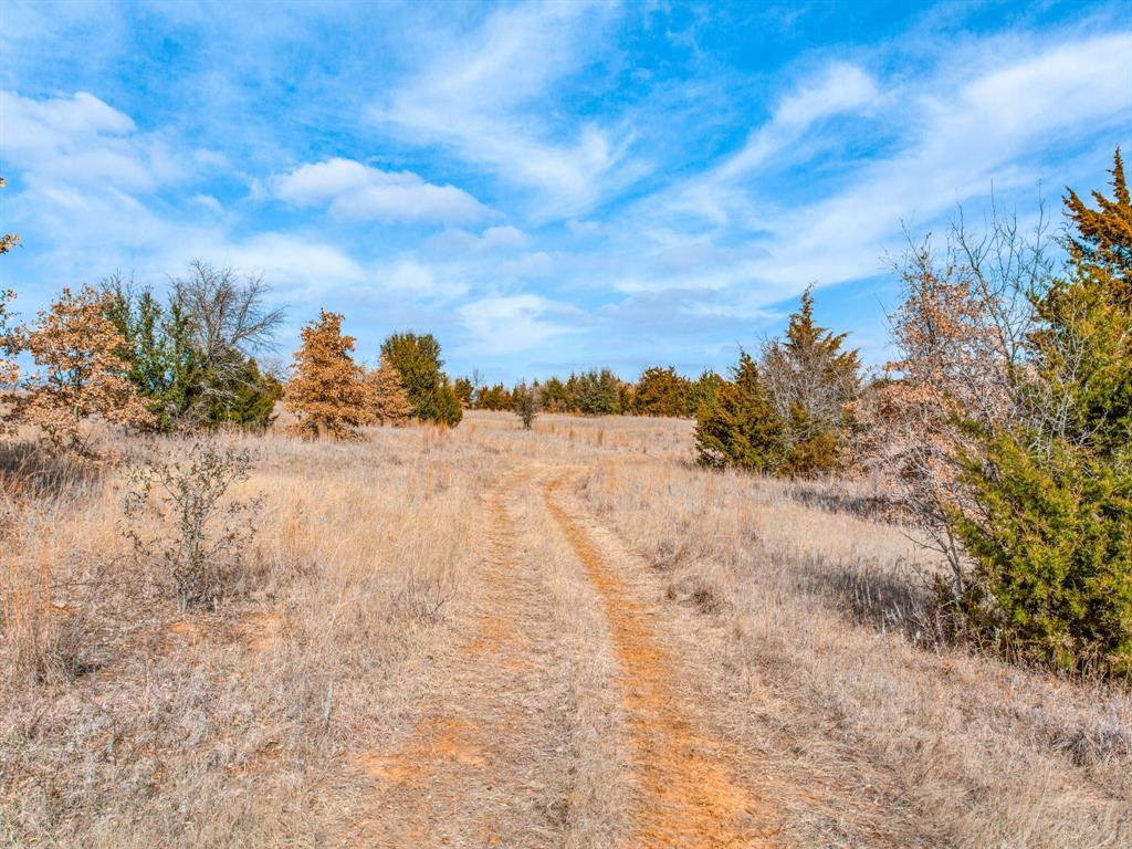 TBD School House Road, Forestburg, Texas 76239 - acquisto real estate best real estate company in frisco texas real estate showings