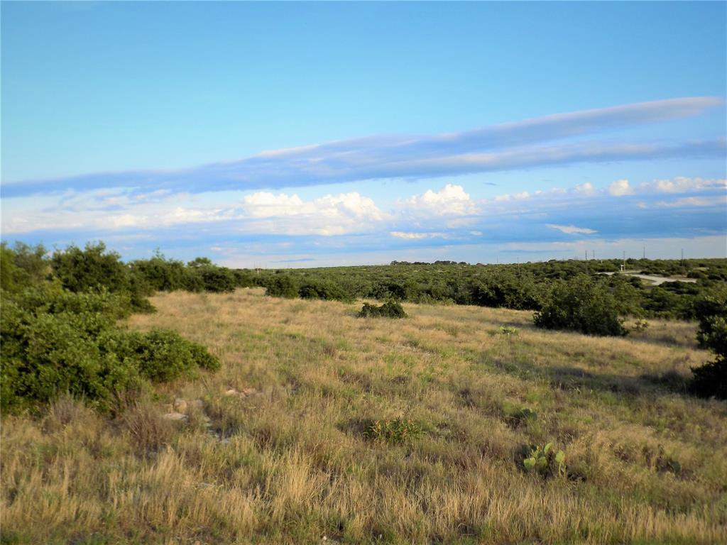 Cypress Point  Court, Possum Kingdom Lake, Texas 76449 - acquisto real estate best new home sales realtor linda miller executor real estate