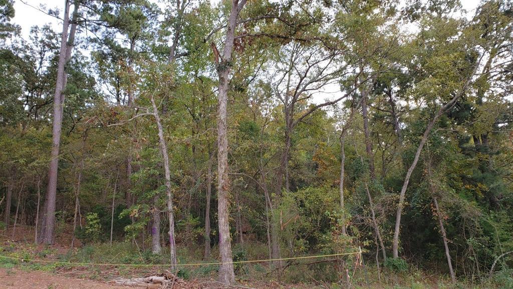 16352 Cumberland Way Bullard, Texas 75757 - acquisto real estate best listing listing agent in texas shana acquisto rich person realtor