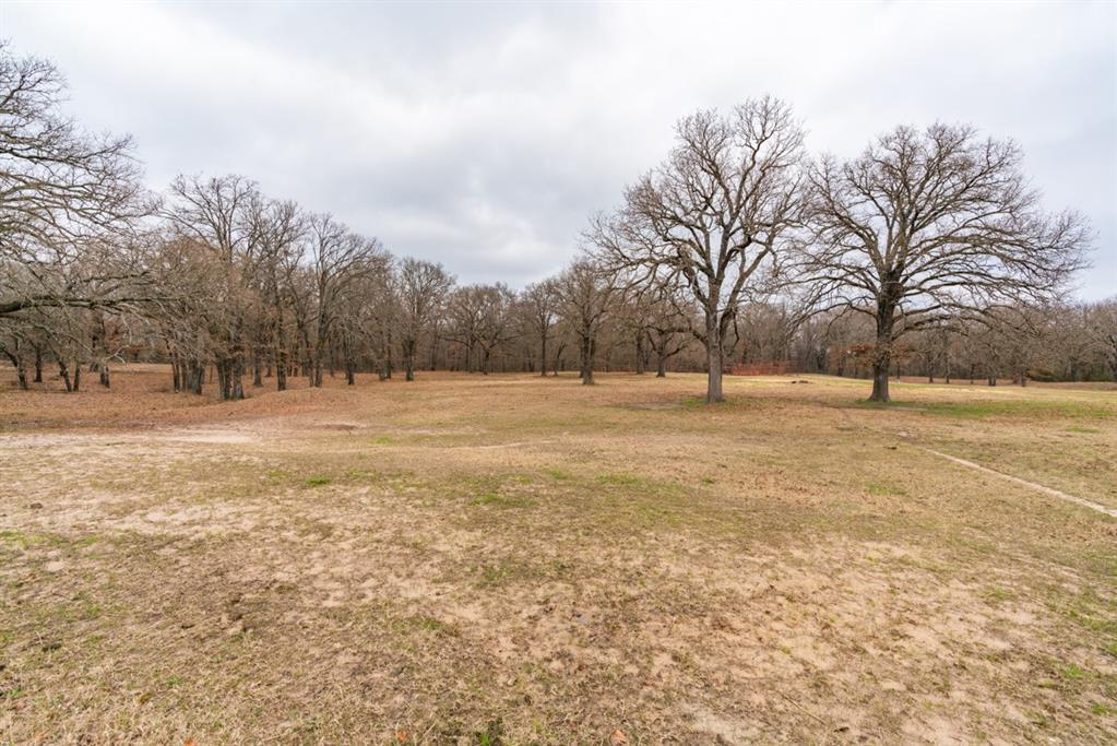 1529 County Road 1220 Lake Creek, Texas 75450 - acquisto real estate agent of the year mike shepherd
