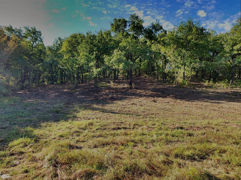 768 HCR 1256 Whitney, Texas 76692 - acquisto real estate smartest realtor in america shana acquisto