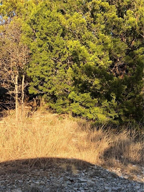 Lot 189 Melbourne Trail, Possum Kingdom Lake, Texas 76449 - acquisto real estate best the colony realtor linda miller the bridges real estate