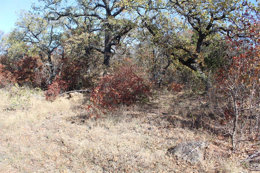 0007 Clayton Mountain Road, Gordon, Texas 76453 - Acquisto Real Estate best mckinney realtor hannah ewing stonebridge ranch expert