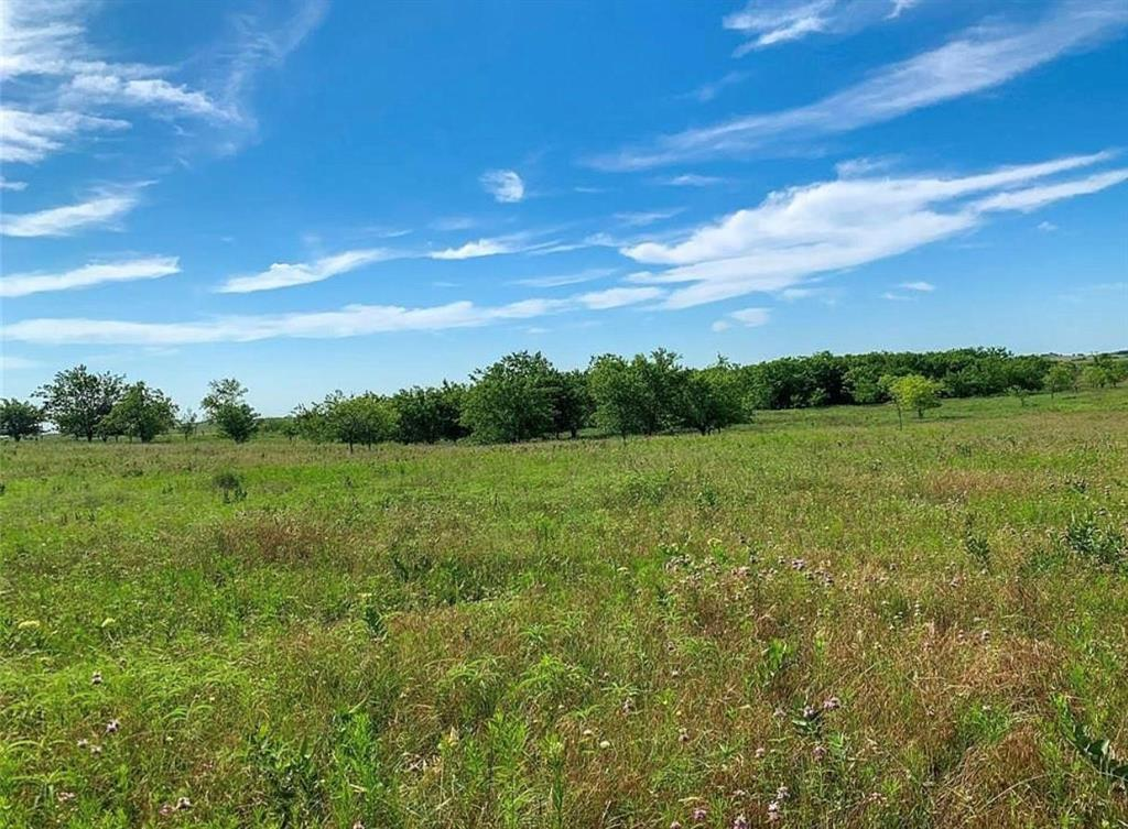 TBD T N Skiles Road, Ponder, Texas 76259 - acquisto real estate best luxury buyers agent in texas shana acquisto inheritance realtor