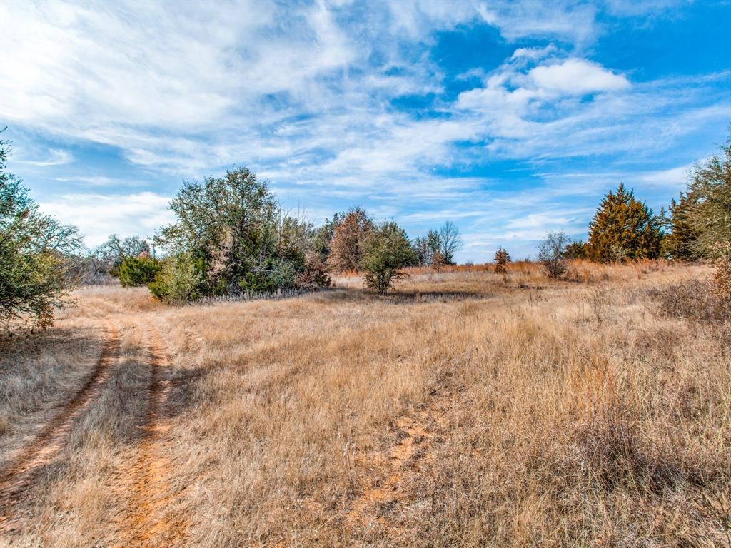 TBD School House Road, Forestburg, Texas 76239 - acquisto real estate best listing listing agent in texas shana acquisto rich person realtor