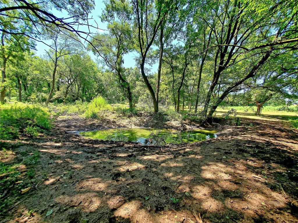 610 CR 4005  Savoy, Texas 75479 - acquisto real estate best realtor dfw jody daley liberty high school realtor