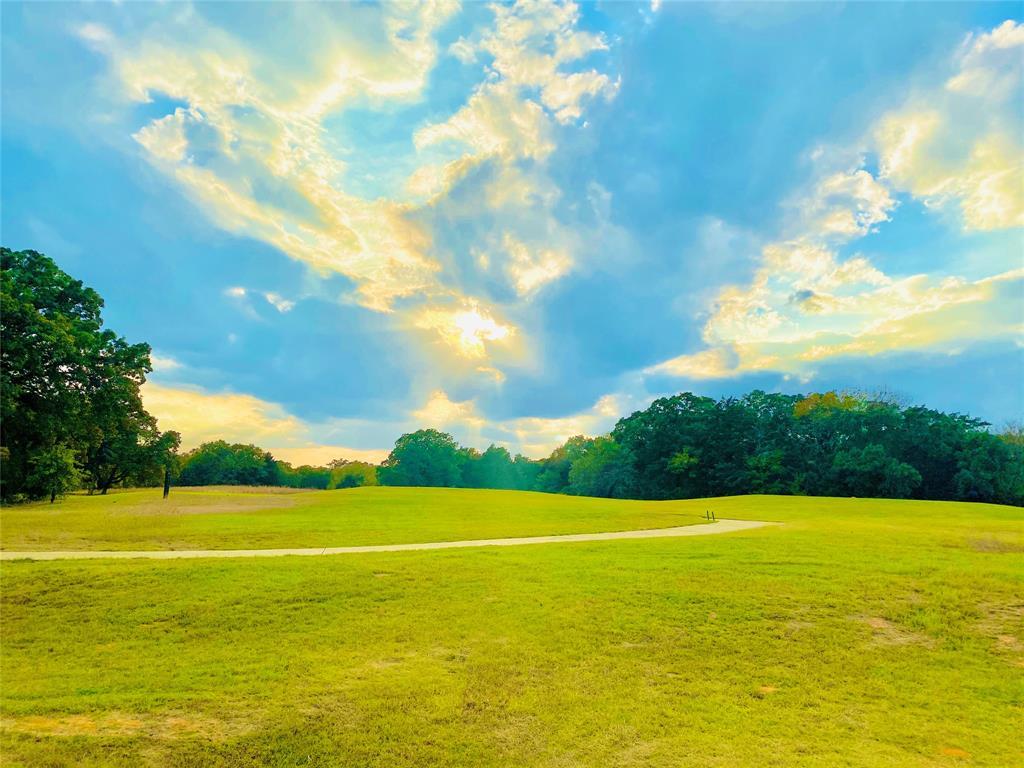 Lot 18A Oakmont  Court, Gordonville, Texas 76245 - acquisto real estate best luxury buyers agent in texas shana acquisto inheritance realtor