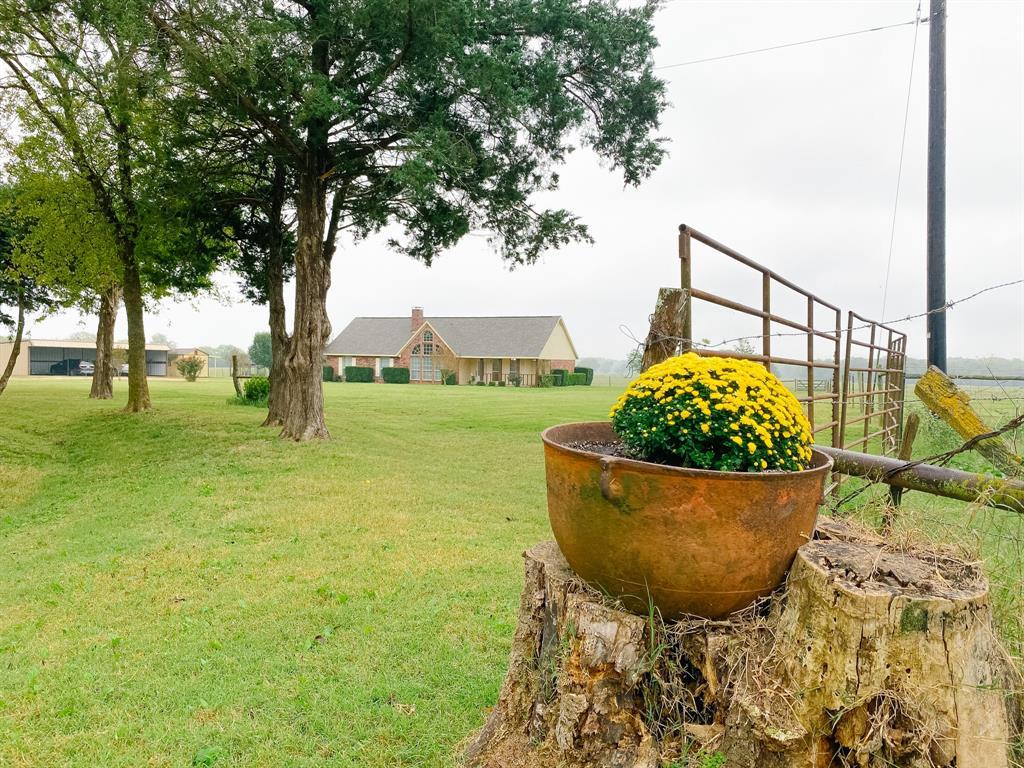 118 County Road 3560 Dike, Texas 75437 - acquisto real estate smartest realtor in america shana acquisto