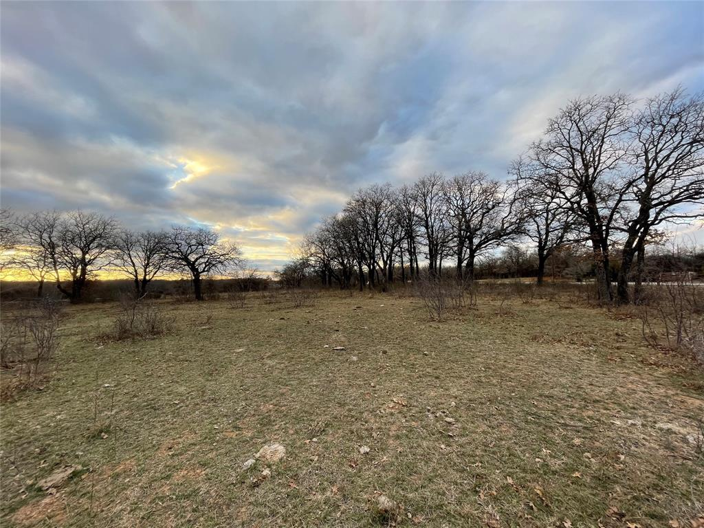 10 Ac Sunflower Paradise, Texas 76073 - acquisto real estate best realtor dallas texas linda miller agent for cultural buyers