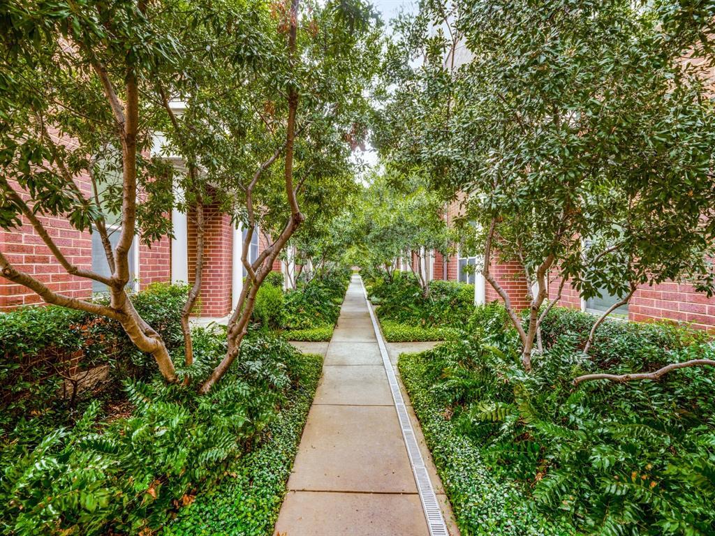 4411 Mckinney Avenue, Dallas, Texas 75205 - acquisto real estate best allen realtor kim miller hunters creek expert