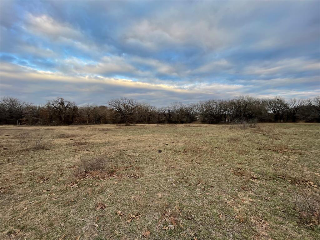 10 Ac Sunflower Paradise, Texas 76073 - acquisto real estate best flower mound realtor jody daley lake highalands agent of the year