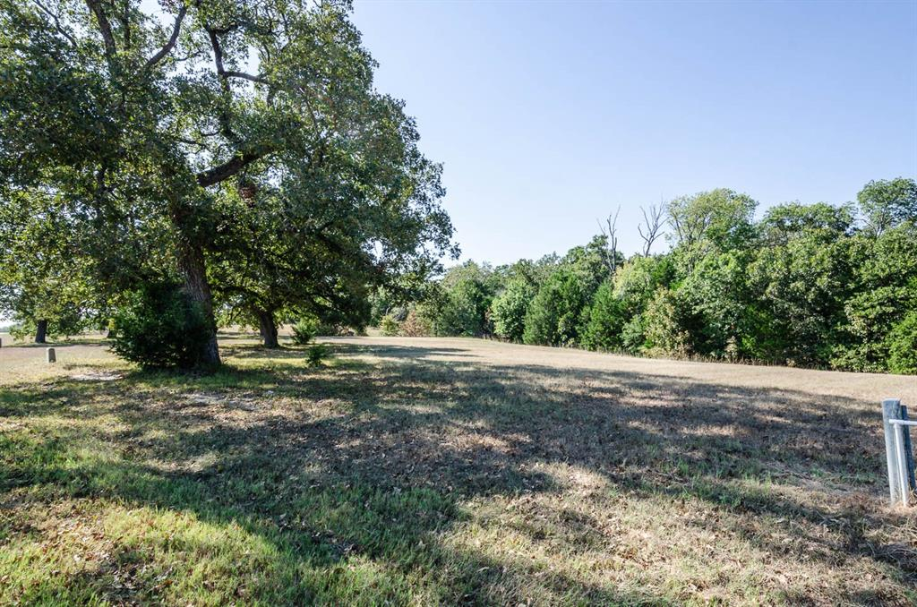 14052 Whatley Drive, Streetman, Texas 75859 - acquisto real estate best new home sales realtor linda miller executor real estate