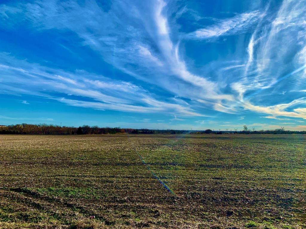 121ac County Road 175  Celina, Texas 75009 - acquisto real estate best celina realtor logan lawrence best dressed realtor