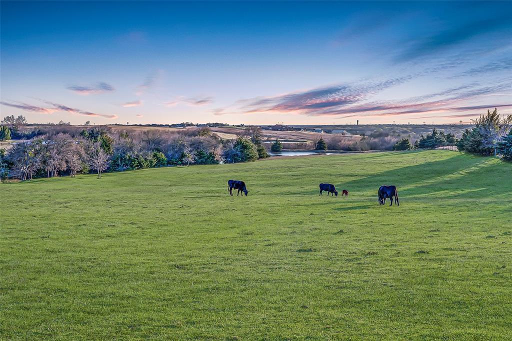 1554 Mcdonald Road, Rockwall, Texas 75032 - acquisto real estate best allen realtor kim miller hunters creek expert