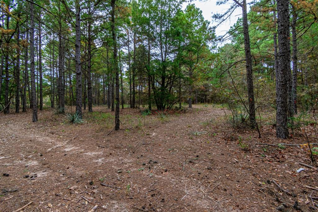 16543 County Road 3147 Tyler, Texas 75706 - acquisto real estate best highland park realtor amy gasperini fast real estate service