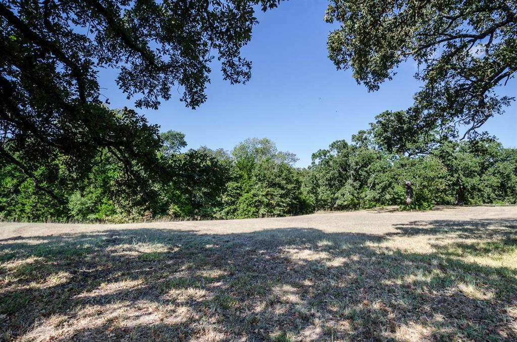 14052 Whatley Drive, Streetman, Texas 75859 - acquisto real estaet best boutique real estate firm in texas for high net worth sellers