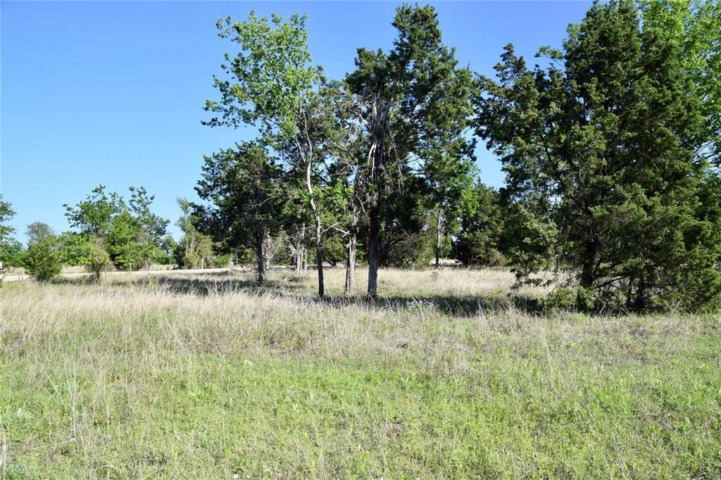 Lot 24 Aviara  Ridge, Poolville, Texas 76487 - Acquisto Real Estate best plano realtor mike Shepherd home owners association expert